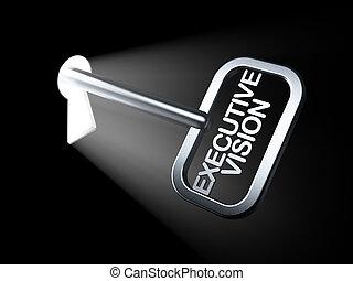 klucz, widzenie, wykonawca, finanse, concept:
