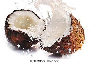 knäckt, kokosnöt, med, plaska