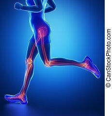 Knee, hip, ankle - running man leg scan in blue