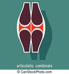 Knee joint health care icon sticker
