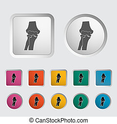 Knee-joint single icon. Vector illustration.