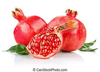 knippen, granaatappel, groene, vruchten, fris, bladeren