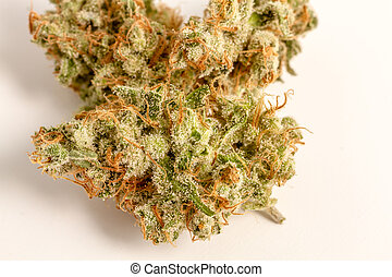 knospen, marihuana