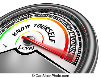 Know yourself level to maximum conceptual meter, isolated on...