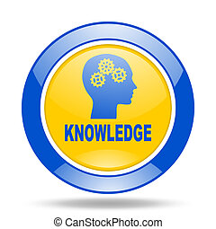 knowledge blue and yellow web glossy round icon