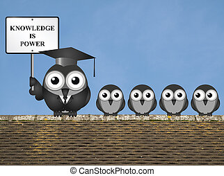 Knowledge is Power - Knowledge is power sign with bird ...