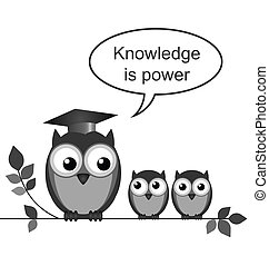 Knowledge - Owl teacher knowledge is power message isolated...