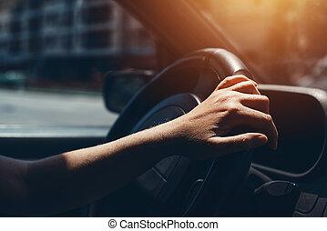 koło, wóz, sterowniczy, samicza ręka