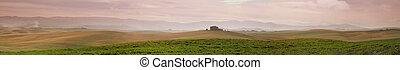 kołyszący, panorama, włochy, pola