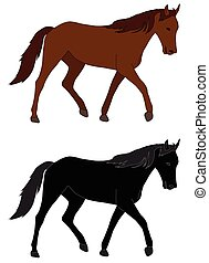 koń, ilustracja