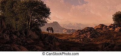 koń pastwiskowy, południowo-zachodni