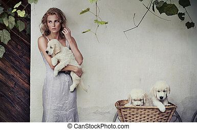 koš, štěně, mládě, kráska