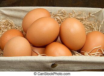 koš, hněď, vejce