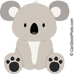 Baby koala bear seated