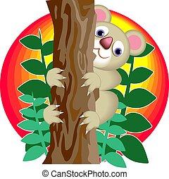 Koala Bear - Koala bear climbing a eucalyptus tree.