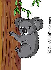 koala, caricatura