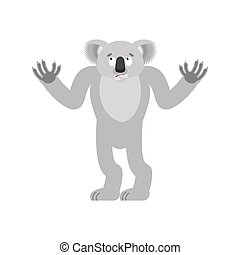 Koala confused. koala bear perplexed. Beast surprise. Vector...