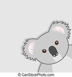 Koala cover - Creative design of koala cover