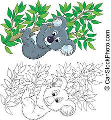 Koala - koala bear hanging on an eucalyptus branch, color...