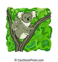 Koala family - Koala mother and baby bear sitting on the...
