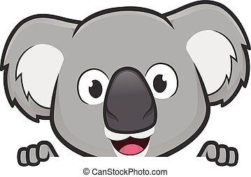 koala, felett, aláír, látszó, bizottság, birtok, tiszta