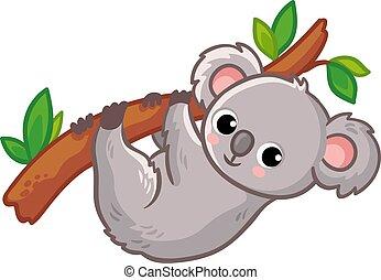 Koala hangs on a tree on a white background. Cute Australian animal in a cartoon style.