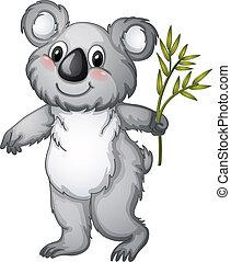 Koala - illustration of a koala bear on a white background