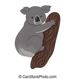 Koala isolated on a white background. Vector graphics.