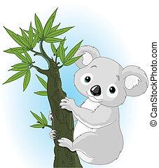 koala, lindo, árbol