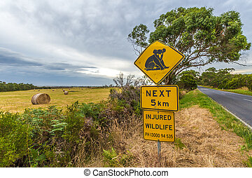 Koala road sign
