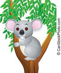 koala, spotprent