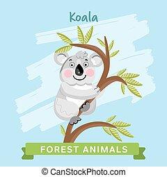 koala, wektor, las, animals.