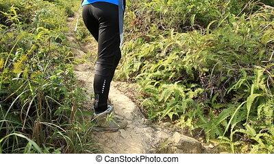 kobieta hiking, na, mountaiin, ciągnąć