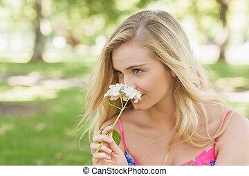 kobieta, pachnący, śliczny, kwiat, blondynka