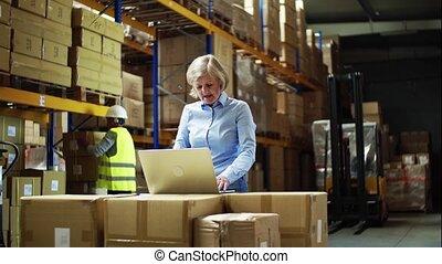 kobieta, pracujący, laptop, pracownik, dyrektor, warehouse., starszy człowiek