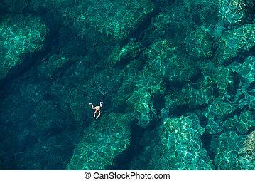 kobieta, prospekt, snorkeling, morze, truteń
