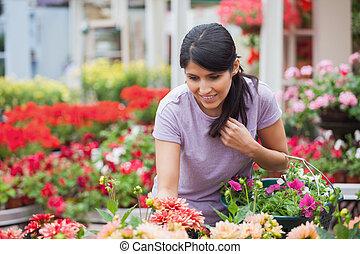 kobieta przeglądnięcie, na, rośliny, w, ogrodowy środek