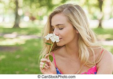 kobieta, przypadkowy, sprytny, prospekt, bok, pachnący, kwiat, biały