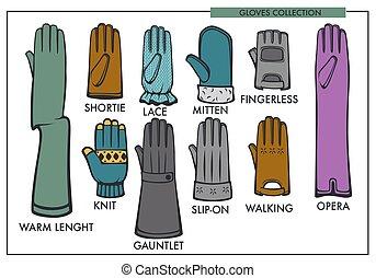 kobieta, rękawiczki, część garderoby, typ, wzory, zbiór, wektor, odizolowany, samica, fason, rękawiczka, kreska, ikony