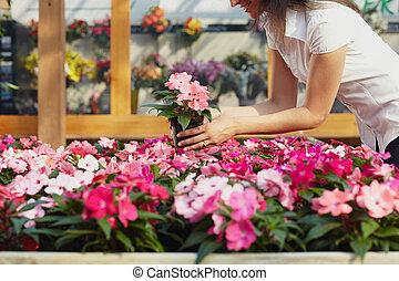 kobieta shopping, w, ogrodowy środek