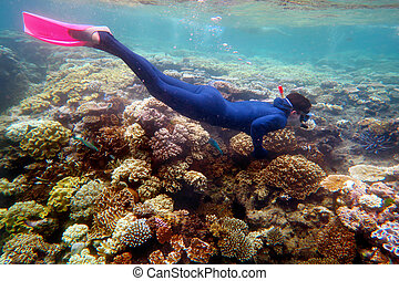 kobieta, snorkeling, nurkować