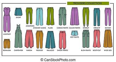 kobieta, spodnie, typ, wzory, zbiór, wektor, odizolowany, samica, fason, kreska, ikony