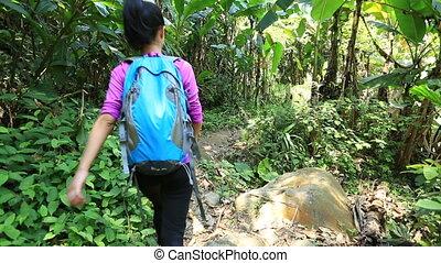 kobieta, wycieczkowicz, pieszy, ciągnąć, las