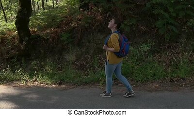 kobieta, wycieczkowicz, pieszy, droga, plecak, las