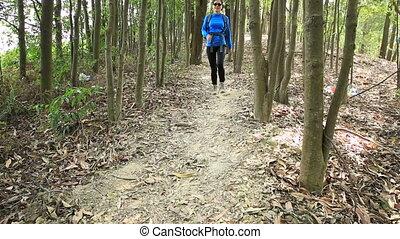 kobieta, wycieczkowicz, pieszy, młody, las