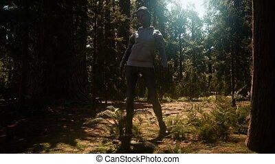 kobieta, yosimite, sekwoja rodak park