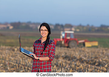 kobieta, z, laptop, w, przedimek określony przed rzeczownikami, pole
