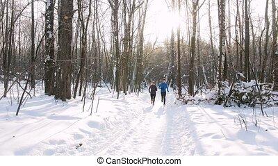 kobieta, zima, ludzie, woods., młody, rano, forest., wyścigi, tło, narciarstwo, człowiek