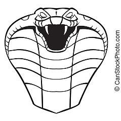 kobra, kopf