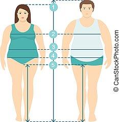 koerper, wohnung, stil, voll, measurements., parameters, proportions., kleidung, linien, maße, übergewichtige , länge, frauen, plus, menschliche , maß, illistration, mann- größe